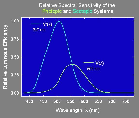 Spektrální citlivost fotoreceptorů